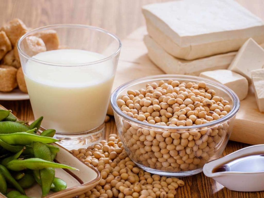 food rich in phytoestrogen